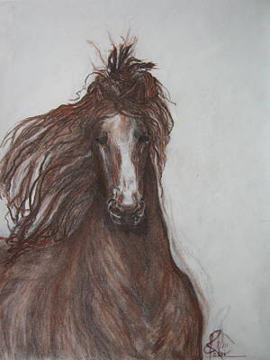 Horse Art Pastels Painting - Horse  by Ethel Rossi