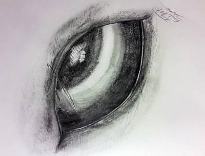 Animals Drawings - Horse Eye by Kimberlee Marvin