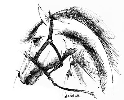 Animals Drawings - Horse face ink sketch drawing by Daliana Pacuraru