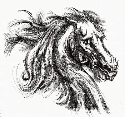 Drawing - Horse Face Ink Sketch Drawing - Inventing A Horse by Daliana Pacuraru