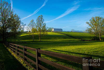 Photograph - Kentucky Horse Farm by RLH Photography