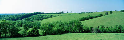 Pasture Woodland Photograph - Horse Farm, Kentucky, Usa by Panoramic Images