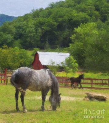Digital Art - Horse Farm Oil Painting by Jill Lang