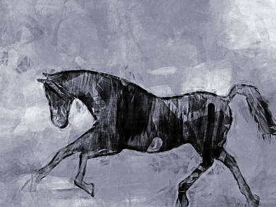 Animals Digital Art - Horse Greyscale by Lutz Baar