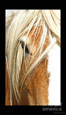 Photograph - Horse Head Iphone Case by Debbie Portwood