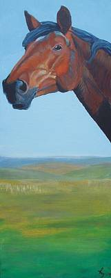 Painting - Horse Head Painting by Mike Jory