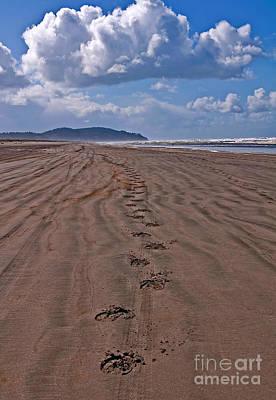Photograph - Horse Hoof Tracks On An Empty Beach Long Beach Wa Art Prints by Valerie Garner