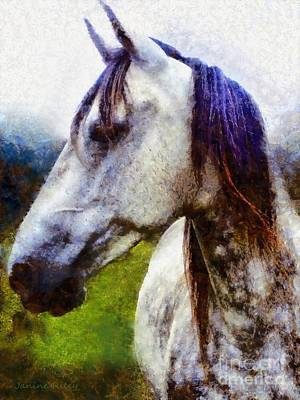 Dapple Gray Photograph - Horse I Dream Of You by Janine Riley
