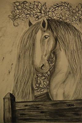 Drawing - Horse In The Paddock by Maria Urso