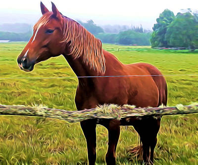 Mixed Media - Horse In The Pasture by Pamela Walton
