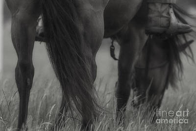 Photograph - Horse Infared by Kim Henderson