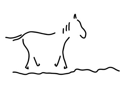 Wild Horse Drawing - Horse by Lineamentum