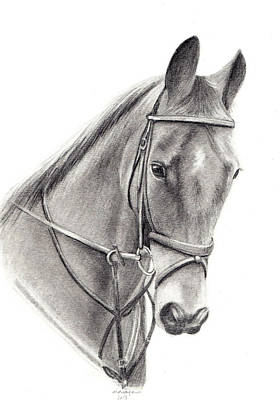 Horse Art Print by Mary Mayes