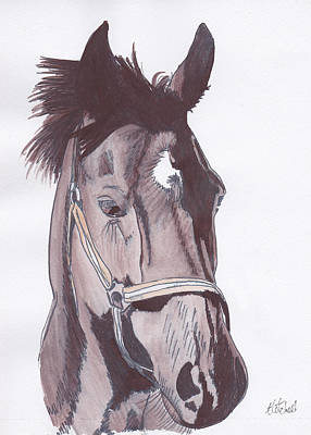 Painting - Horse Of Course by Amanda Mitchell