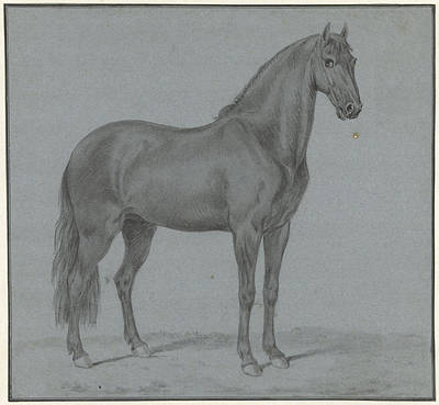 Christian Artwork Drawing - Horse Of Monsieur De Guille, Tethart Philip Christian Haag by Quint Lox
