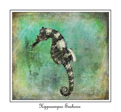 Horse Of The Sea Art Print by Barbara Chichester