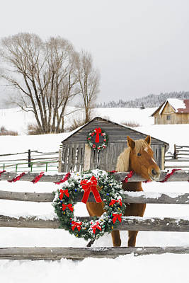 Horse On Soward Ranch Decorated For The Art Print