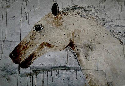 Horse Painting Fine Art Print Art Print by Laura Carter