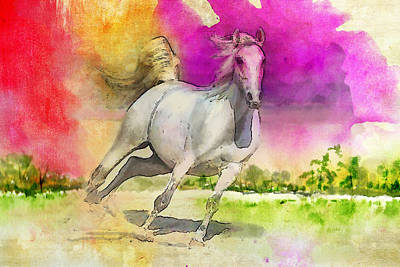 Horse Paintings 007 Art Print by Catf
