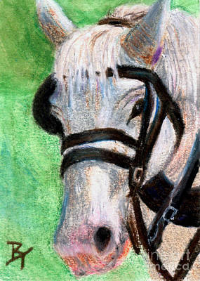 Painting - Horse Portrait Aceo by Brenda Thour