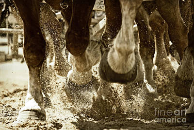 Art Print featuring the photograph Horse Power And Teamwork by Lincoln Rogers