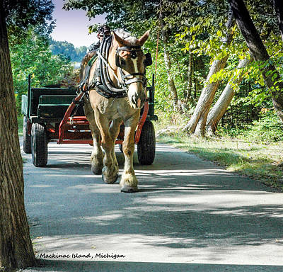 Photograph - Horse Powered Mackinac Island by LeeAnn McLaneGoetz McLaneGoetzStudioLLCcom