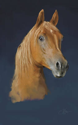 Painter Digital Art - Horse Profile by Dale Stillman