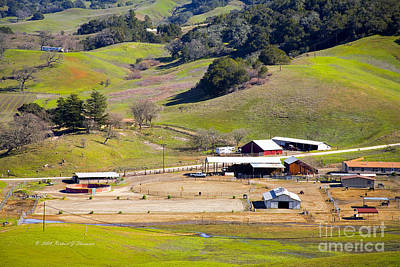 Photograph - Horse Ranch by Richard J Thompson
