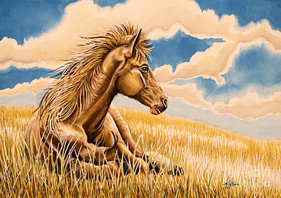 Horse Resting Art Print