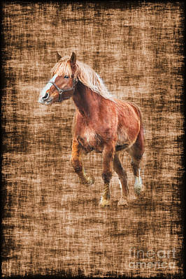 Horse Running Art Print by Dan Friend