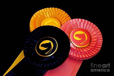 Photograph - Horse Show Ribbons by Janice Byer