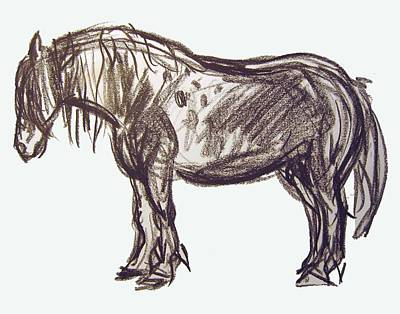 Horse Sketch Art Print by Gita Lloyd