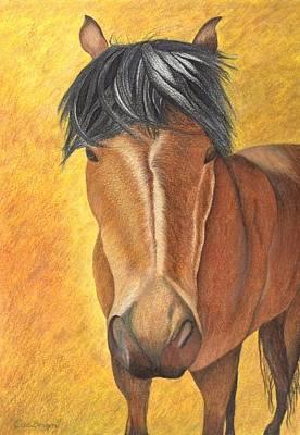 Drawing - Horse Stare by Carol De Bruyn