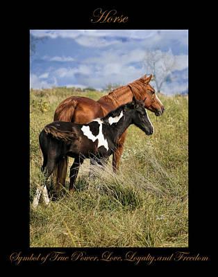Photograph - Horse Symbol Of by Marty Maynard