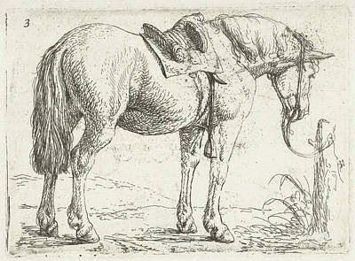 Pole Drawing - Horse With Saddle, Jan Van Aken, Jochem Bormeester by Jan Van Aken And Jochem Bormeester