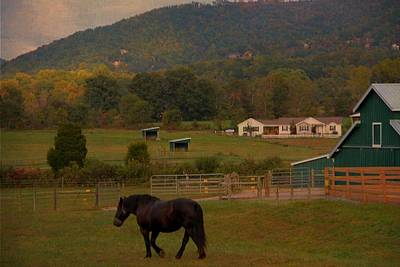 Barn In Woods Photograph - Horseback Riding In Gatlinburg by Dan Sproul