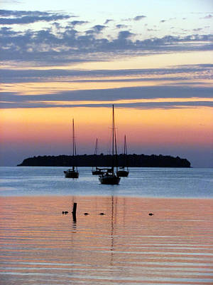 Horsehoe Island Sunset Art Print by David T Wilkinson
