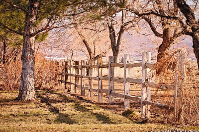 Art Print featuring the photograph Horsemans Park Reno Nevada by Janis Knight