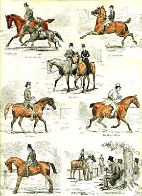 Veteran Drawing - Horsemanship U.k by English School