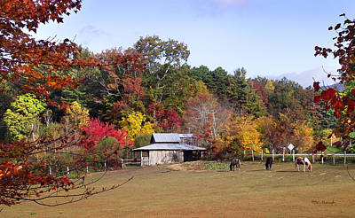 Photograph - Horses And Barn In The Fall 2 by Duane McCullough