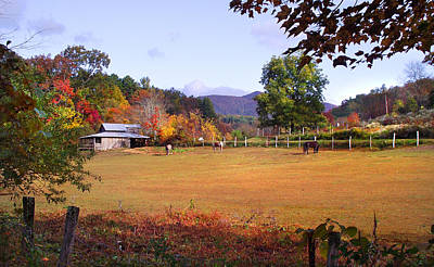 Photograph - Horses And Barn In The Fall 4 by Duane McCullough
