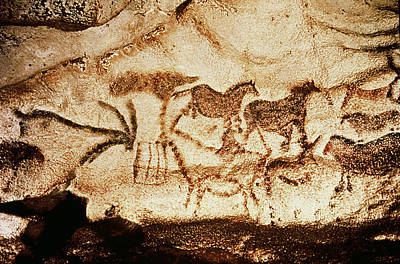Horses And Deer From The Caves At Altamira, 15000 Bc Cave Painting Art Print by Prehistoric