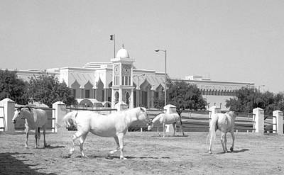 Horses And Emiri Palace Art Print