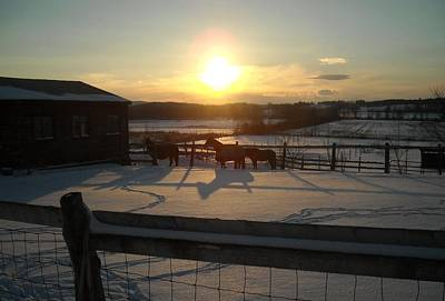 Photograph - horses at Sunset in the Snow by Ishana Ingerman