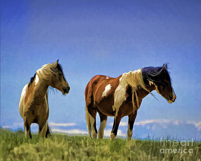 Wild Horse Photograph - Horses - Double Painted Paints by Wildlife Fine Art