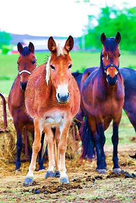 Horses Horses Art Print