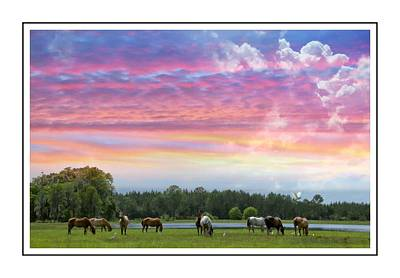 Photograph - Horses In The Field by Alice Gipson
