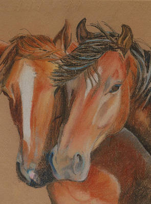 Pastel - Horses Looking At You by Teresa Smith