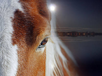 Horses  Art Print by Mark Ashkenazi
