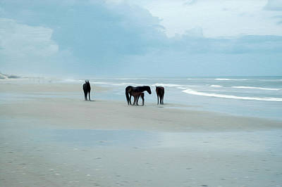 Digital Art - Horses Of The Obx by Kelvin Booker